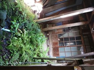 18-09-03-11-09-40-346_photo-.jpg